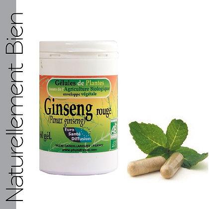 Ginseng Rouge Bio - NN0037