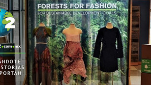 'Forests For Fashion': ONU presenta colección de origen forestal favorable con el medio ambi