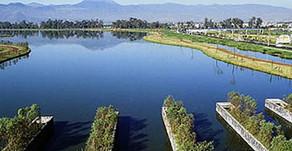 Parque Ecológico de Xochimilco toma segundo aire