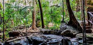 Bushman Photography, un Safari fotográfico único en México