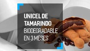 Espuma biodegradable con semillas de tamarindo para sustituir al unicel
