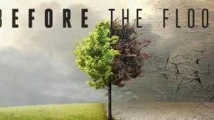 ¿Qué nos dejó 'Before the Flood'?