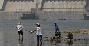 China prohíbe la pesca en el Yangtsé por 10 años para proteger la biodiversidad