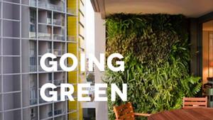 Ser verdes en espacios reducidos