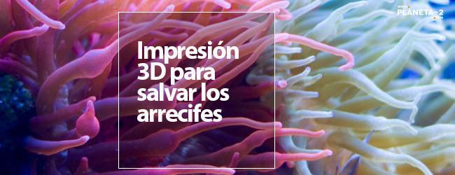 Impresión 3D para regenerar arrecifes