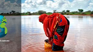 FAO: advierte sobre reducción de agua para agricultura y estrés hídrico