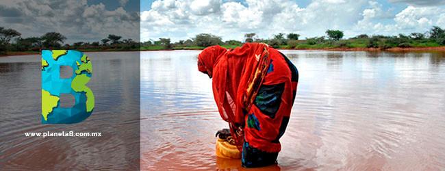FAO escasez de agua agricultura