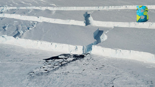 Calentamiento global podría fracturar el 60 por ciento de las plataformas de hielo de la Antártida