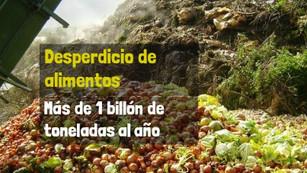 El desperdicio de alimentos genera el 8% de los gases de efecto invernadero