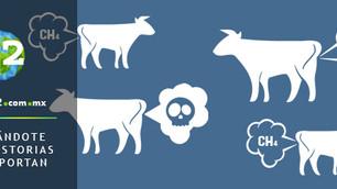 La producción de carne y lácteos superarán a la industria petrolera como las mayores contaminantes d