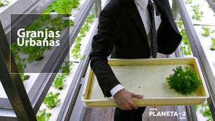 Agricultura urbana: alternativa sustentable