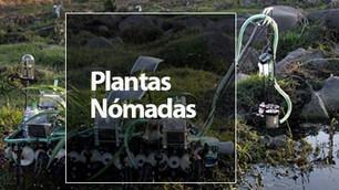 Gilberto Esparza: la mente detrás de las 'plantas nómadas'