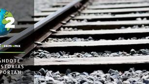 Tren Maya no cuenta con autorización de impacto ambiental y aún así se irá a consulta