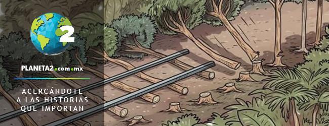 tren maya peligra a acuíferos y jaguares