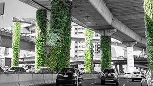 CDMX: hacia una ciudad más verde...esperemos