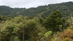 Parque Ecológico de la CDMX abrirá sus puertas al público en diciembre... ¿tendremos la educación cí