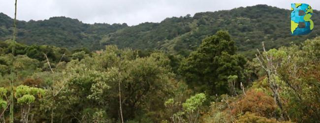 Parque Ecológico de la CDMX abrirá sus puertas al público en diciembre