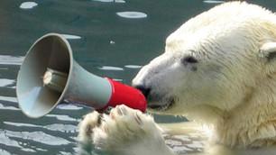 ¿Qué puedes hacer para combatir el cambio climático?... hablar sobre el tema