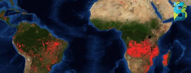 el planeta se calienta y los bosques arden