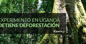 Uganda tiene la solución para frenar la deforestación