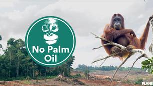Supermercado Iceland elimina el aceite de palma de sus productos de marca propia