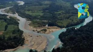 Cuenca del Usumacinta, la región con mayor diversidad de México, muestra deterioro: Julia Carabias