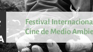 Festival Internacional de Cine de Medio Ambiente