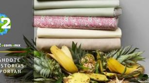 Desperdicio de alimentos, la nueva materia prima sostenible de la industria textil