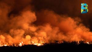 Bolivia declara desastre nacional ante magnitud de los incendios forestales