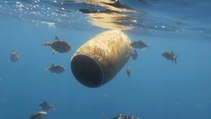Ejecutivo publicó reforma a Ley de Vertimientos en Zonas Marinas que dará más protección a océanos