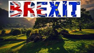 Brexit: ¿una amenaza para el medio ambiente?