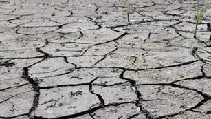 Degradación de suelos nos amenaza a todos: ONU insta a una acción global