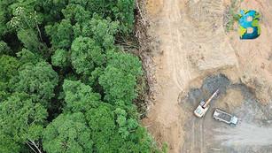 En solo 13 años, la humanidad ha destruido ecosistemas del tamaño de México; 1.9 millones de km2