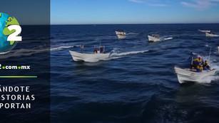Pescadores mexicanos atacan el buque Sea Shepherd que protege la vaquita marina