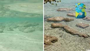 Las 7 tonalidades de azul de la Laguna de Bacalar están en peligro por contaminación y turismo