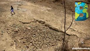 En 50 años, entre 2 y 3.5 mil millones de personas vivirán con temperaturas extremadamente altas