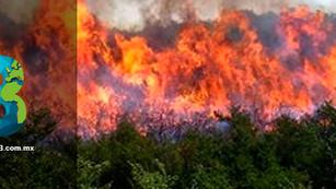 Chiapas bajo fuego: incendios dañan más de 5 mil hectáreas