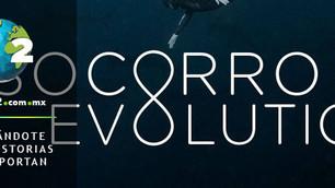 Socorro Evolution, el documental del Archipiélago Revillagigedo que no te quieres perder