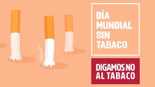 Día Mundial sin Tabaco: reduzcamos la degradación del medio ambiente