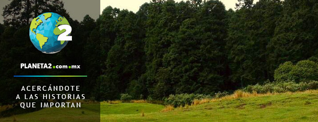 CDMX áreas naturales protegidas aperturas