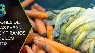 En 2019 se desperdició el 17% de los alimentos, paralelamente 821 millones de personas pasan hambre