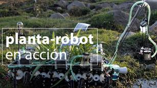 El robot mexicano que limpia aguas residuales