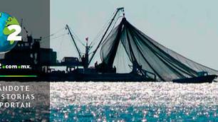 Finalmente, la Conapesca comenzará a regular la sobrepesca y pesca ilegal