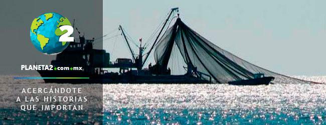 Conapesca regulará sobrepesca