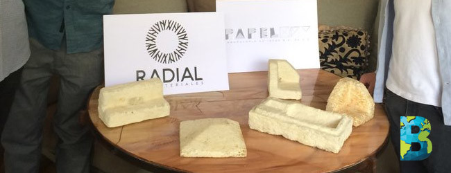 Radial, unicel biodegradable