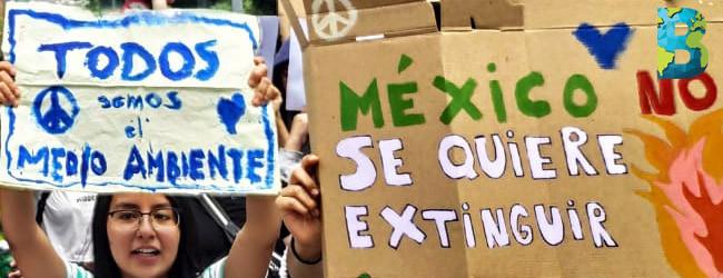 ONU ve retroceso ambiental con gobierno de AMLO
