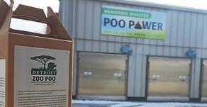 'Poo-Power': zoológico de Detroit convierte la popó de sus animales en energía