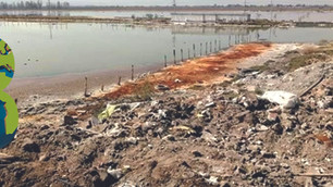 Buscan rescatar el Lago de Xico de ser un tiradero de cascajo y basura