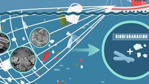 BioCellection: la empresa que quiere 'comerse' el plástico