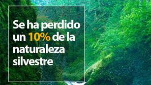 La tierra ha perdido 3.3 millones de km2 de naturaleza silvestres